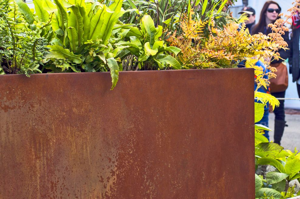 Close Up of a Corten Steel Square Planter At The Royal Botanic Garden Edinburgh