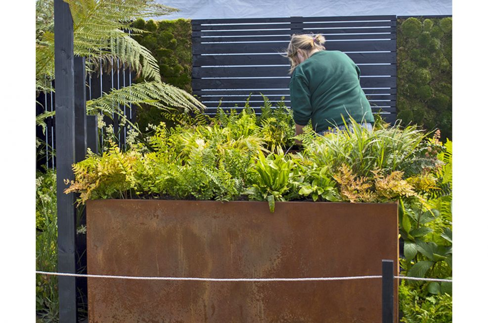 Steel Planters With Orange Rust Style