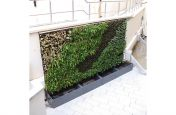 Bespoke Planters and Green Wall System Royal Chambers, Guernsey