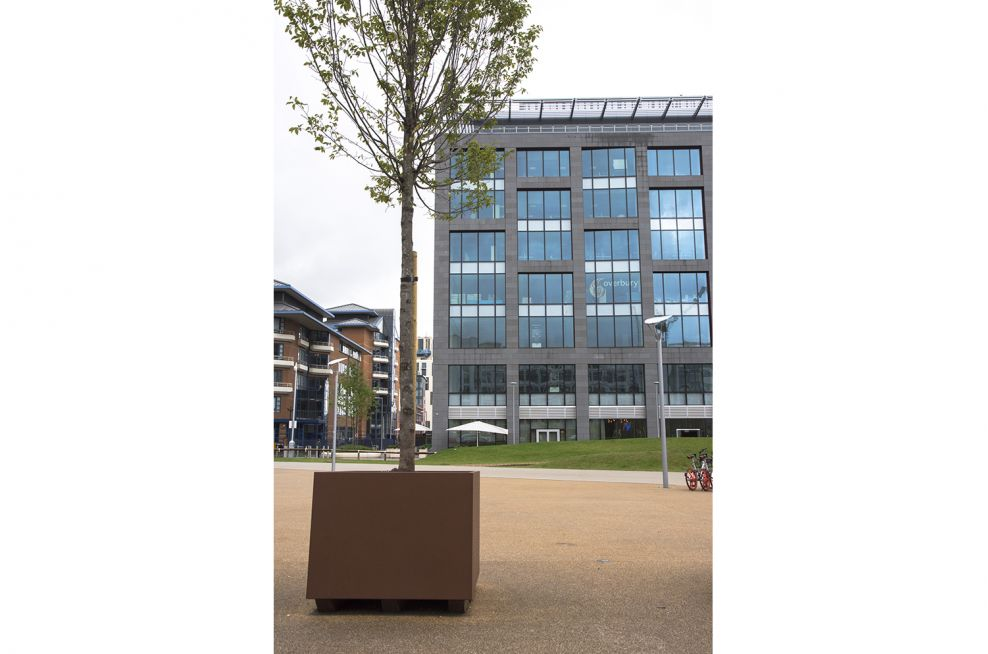 Tree planters for public spaces