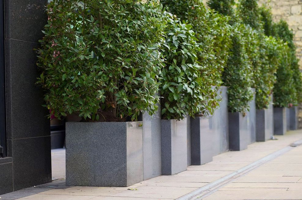 Granite Custom Tall Planters