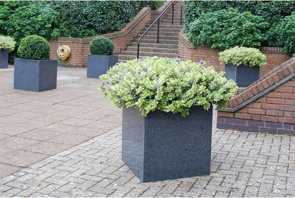 Closeup Of Granite Cube 600 Planter At Seaview Bay, Isle Of Wight