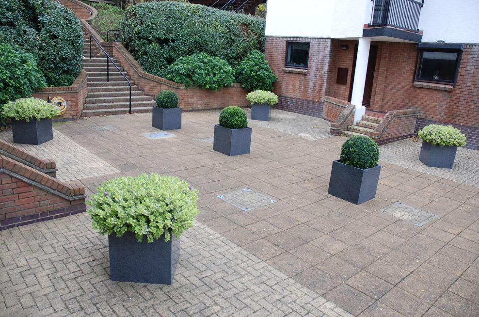 Cube 600 Planter Arrangement On Terrace