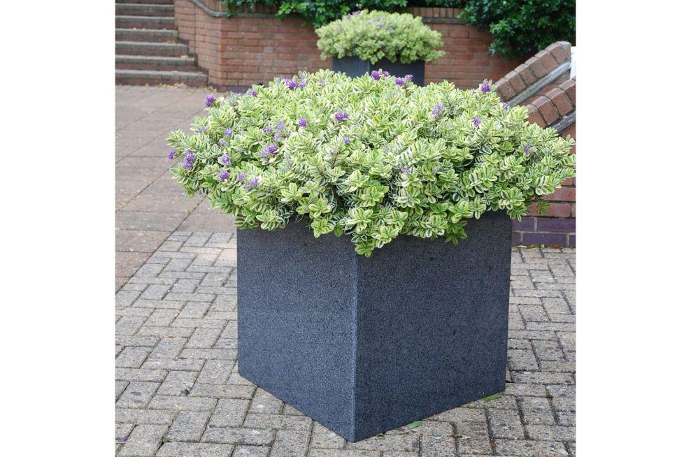 IOTA Granite Planter Close Up