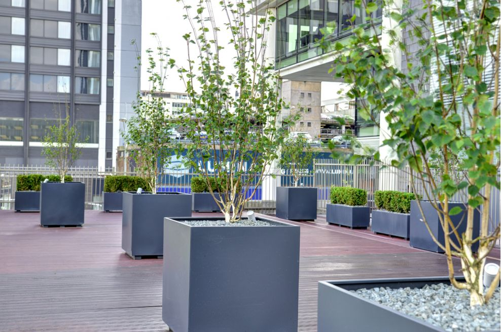 Bespoke Powder Coated Anthracite Grey Tree Planters