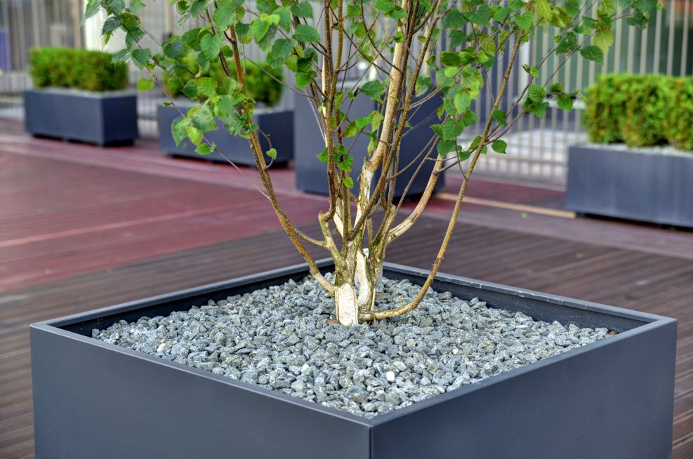 Bespoke Powder Coated Steel Tree Planters