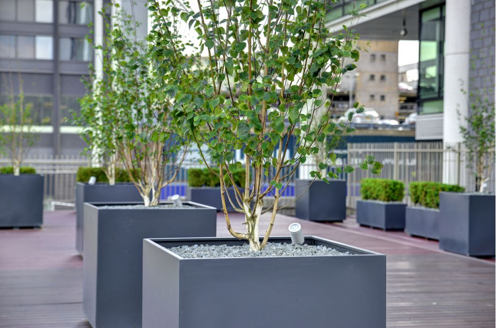 Natural Stone Tree Planter With Soil Level Uplight