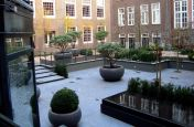 Overlooking The  Aladin Planters In The Courtyard