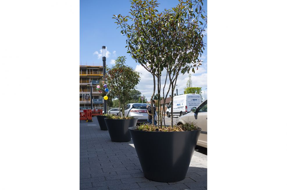 Conical tree planters for public spaces