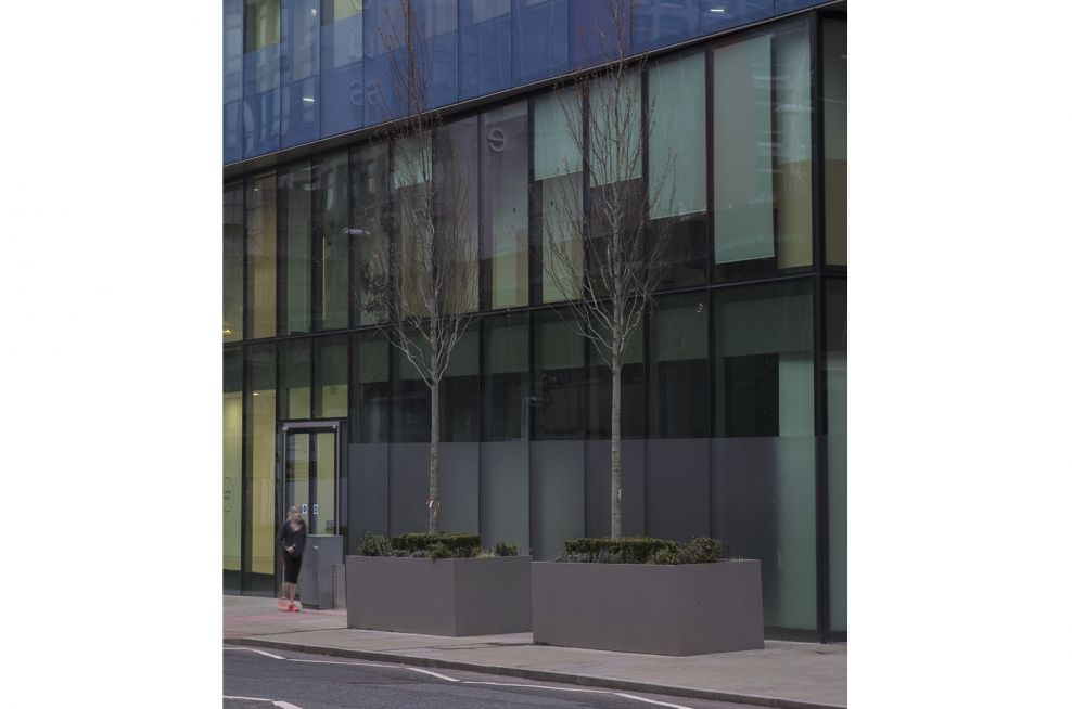 Steel Tree Planters for Commercial Offices
