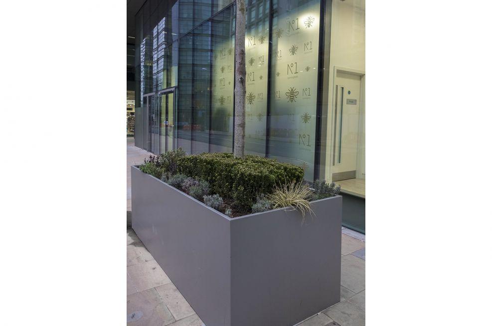 Commercial Trough Planters