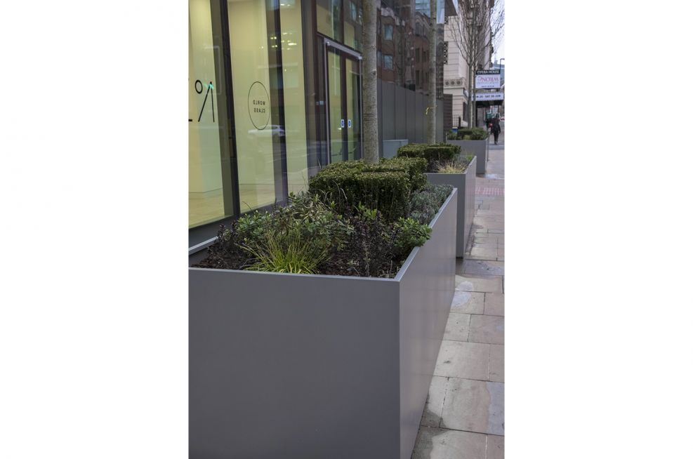 Large Rectangular Planters for Offices