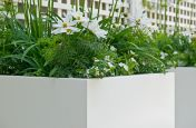 Powder Coated RAL 9010 Pure White Planters