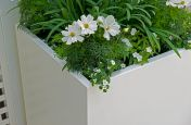 Pure White Powder Coated Planters
