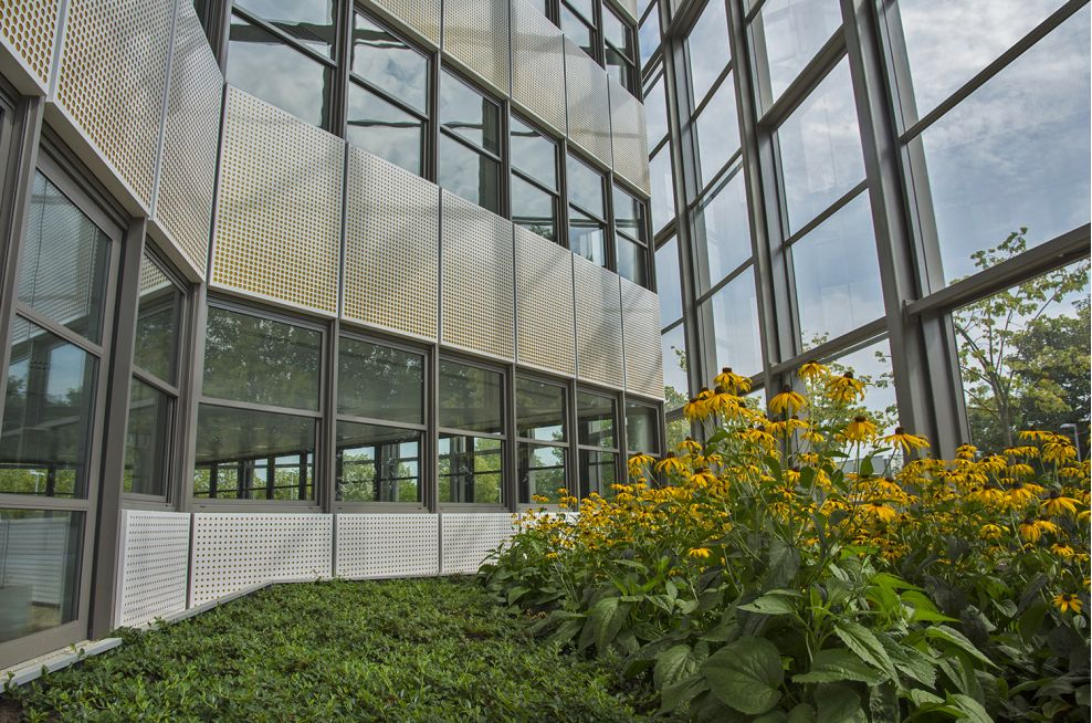 Super Large Planters For The Rear Grand Atrium