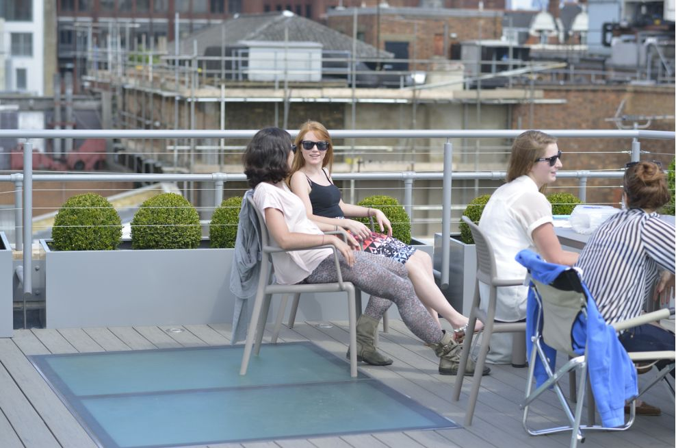 Tapestry Trough Planters on Roof Terrace