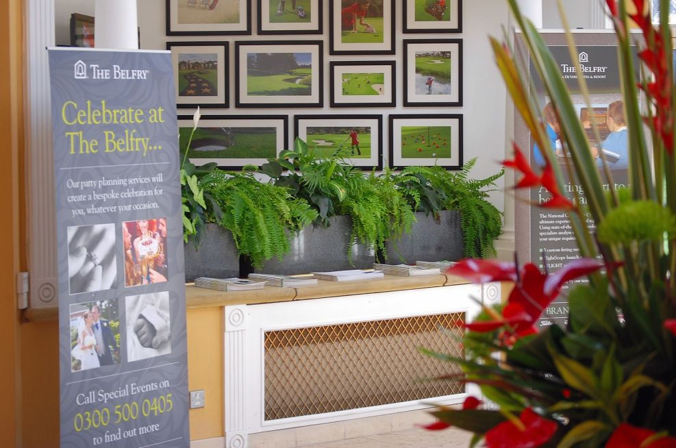 Trough Planters within The Hotel Foyer