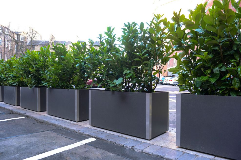 Delta Carat Steel And Fibre Planters