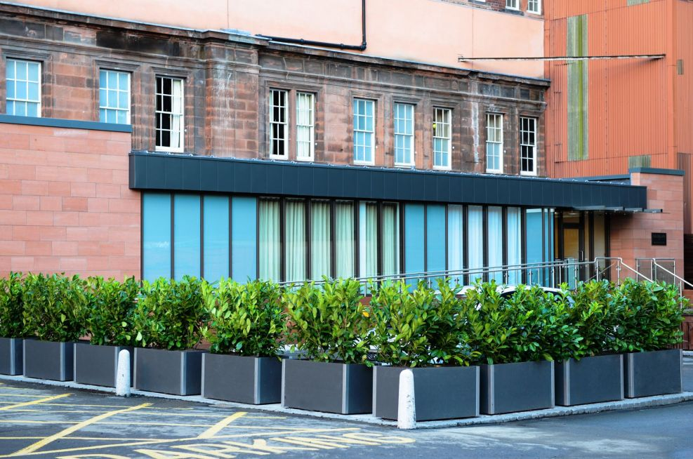 Steel And Fibre Reinforced Cement Planters
