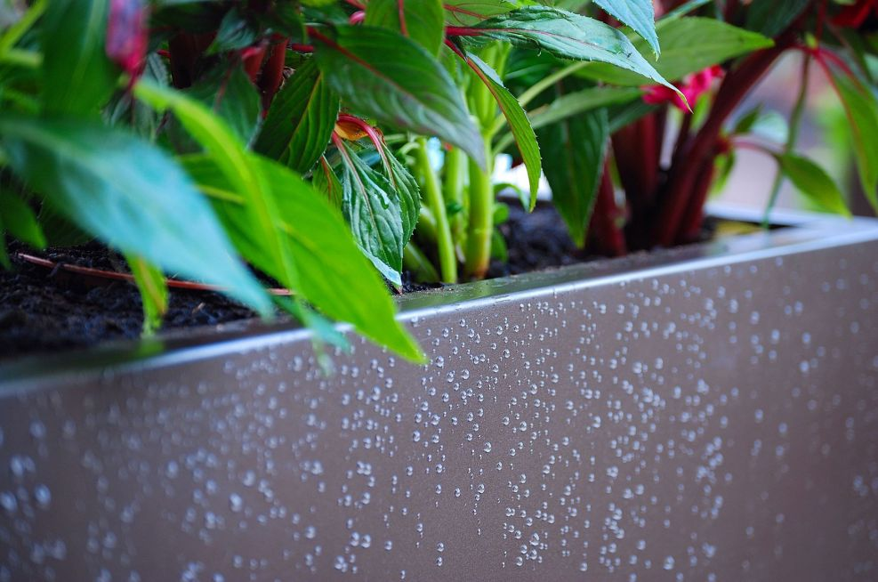 Galvanised Steel Trough Planters