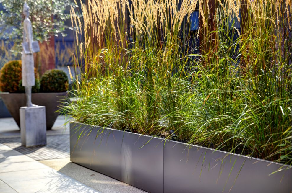 Close Up Of IOTAs Steel Planters