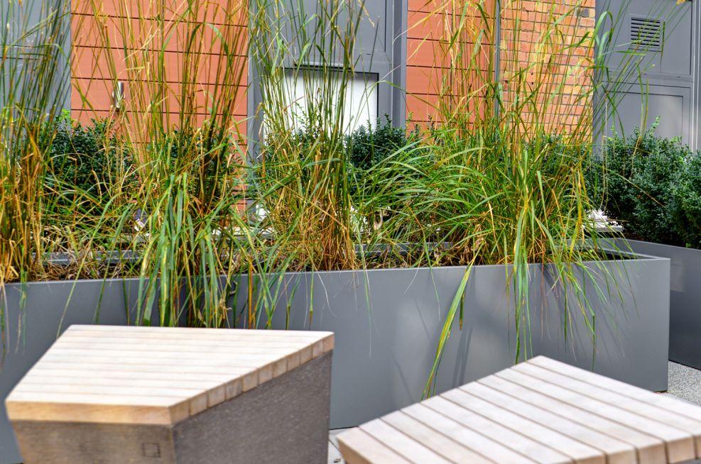 IOTA Planters At Luxury Apartments