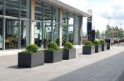 Extra Large 1200mm Trough Planters
