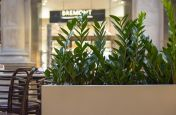 Indoor Steel Planters Sealed Watertight