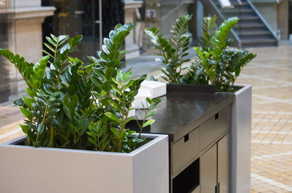 IOTA Steel Planters At The Reception Desk