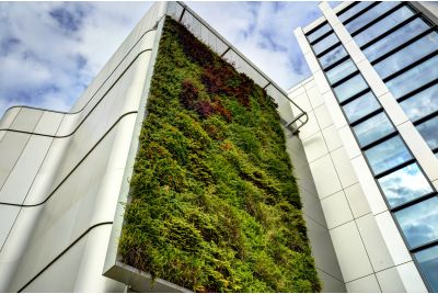 The Living Wall At The University of Bristol, Life Sciences