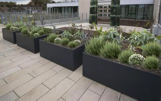 DELTA Custom planters at University of Greenwich: L 1600 x W 1600 x H 700mm, in RAL 7016 [Anthracite grey]