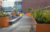 Rectangular Coloured Steel Planters