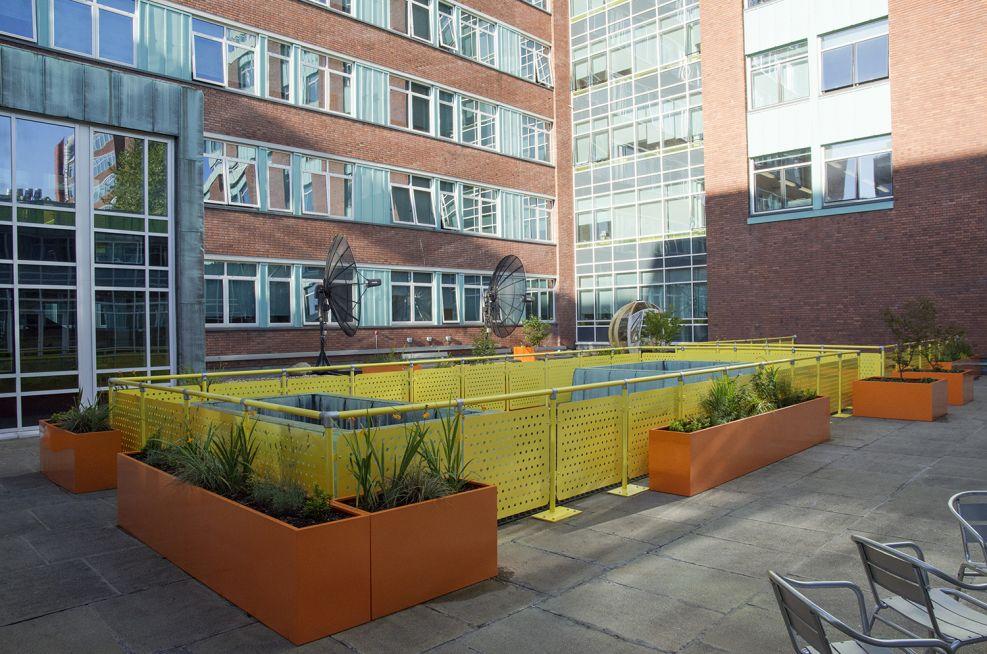 Rectangular Trough Planters