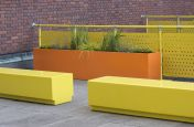 Striking Contrast planters