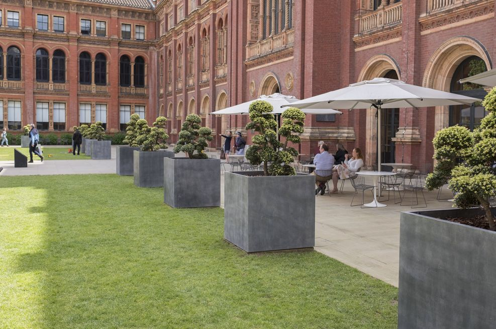 Steel Planters for Trees
