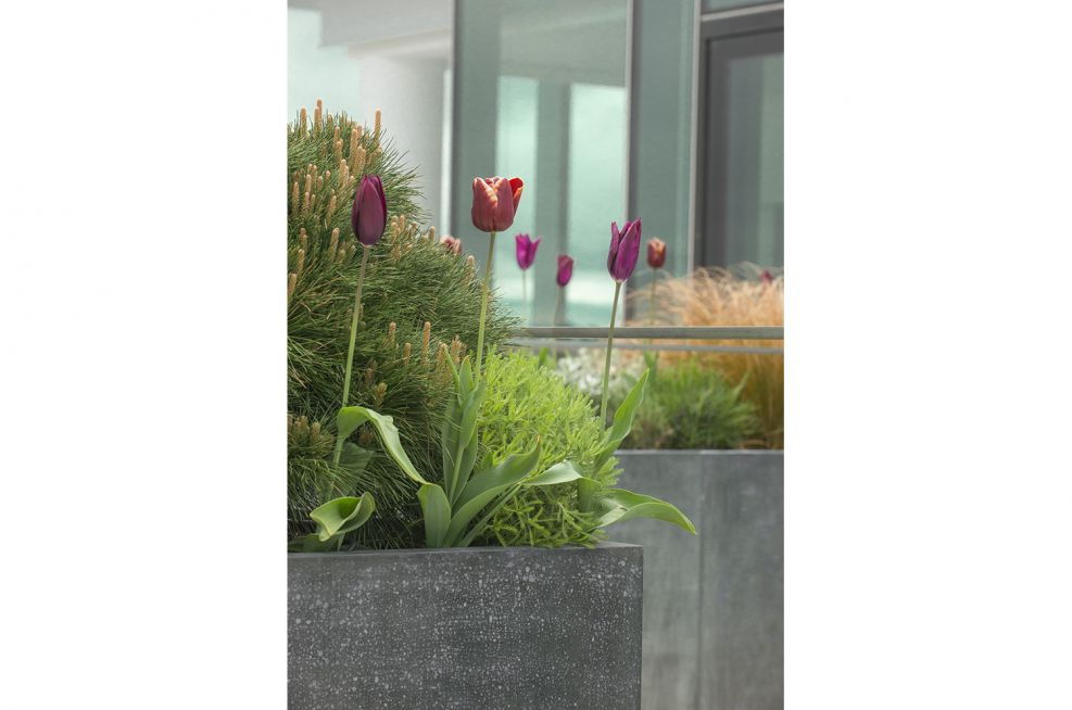 Bespoke Zinc Planters At Verde, London
