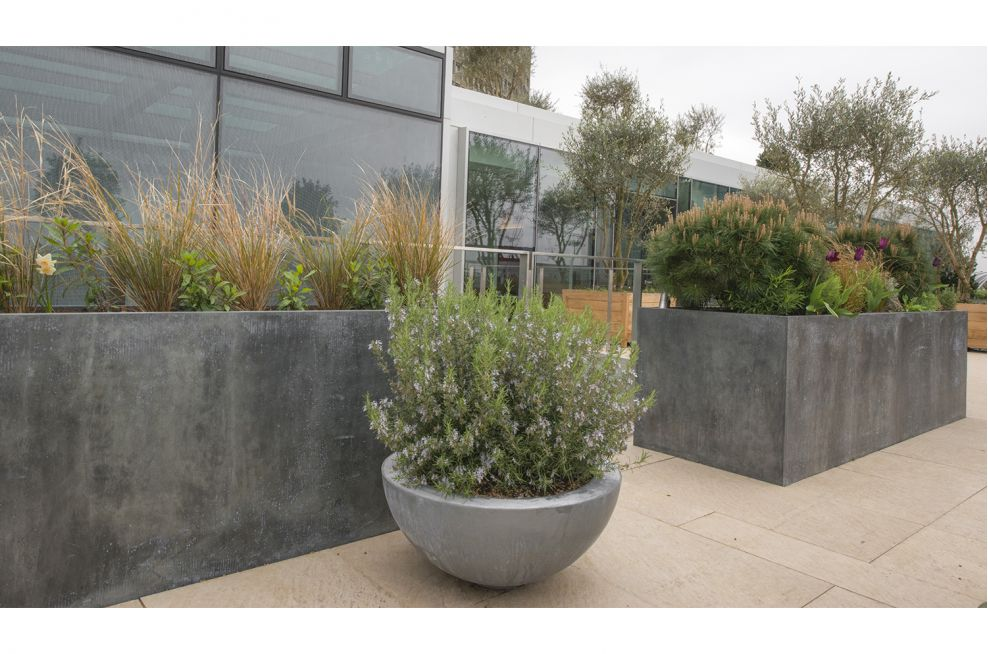 Patinated Finish Zinc Planters