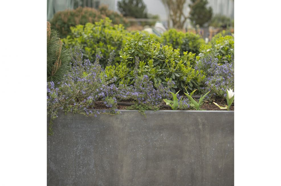 Patinationed Zinc Planters From IOTA