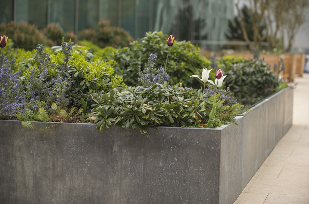 Waterproof Steel Framed Zinc Planters