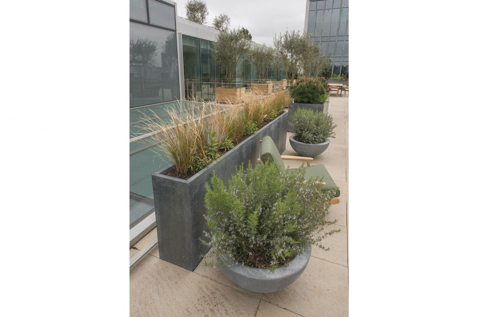 Zinc Planters On A Steel Frame