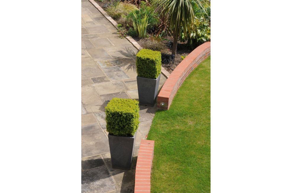 Granite Tall Tapered Planters with Cube-Cut topiary