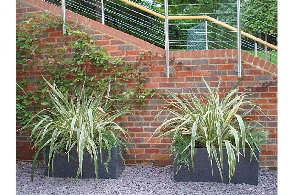 Tall Taper Planters and Tree Planters At Residence
