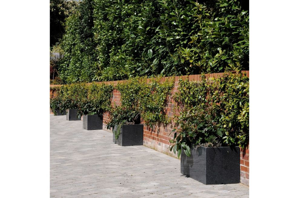 Trough 1000 Planters Along The Wall