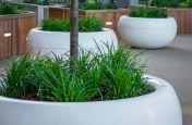 Large FRC tree planters