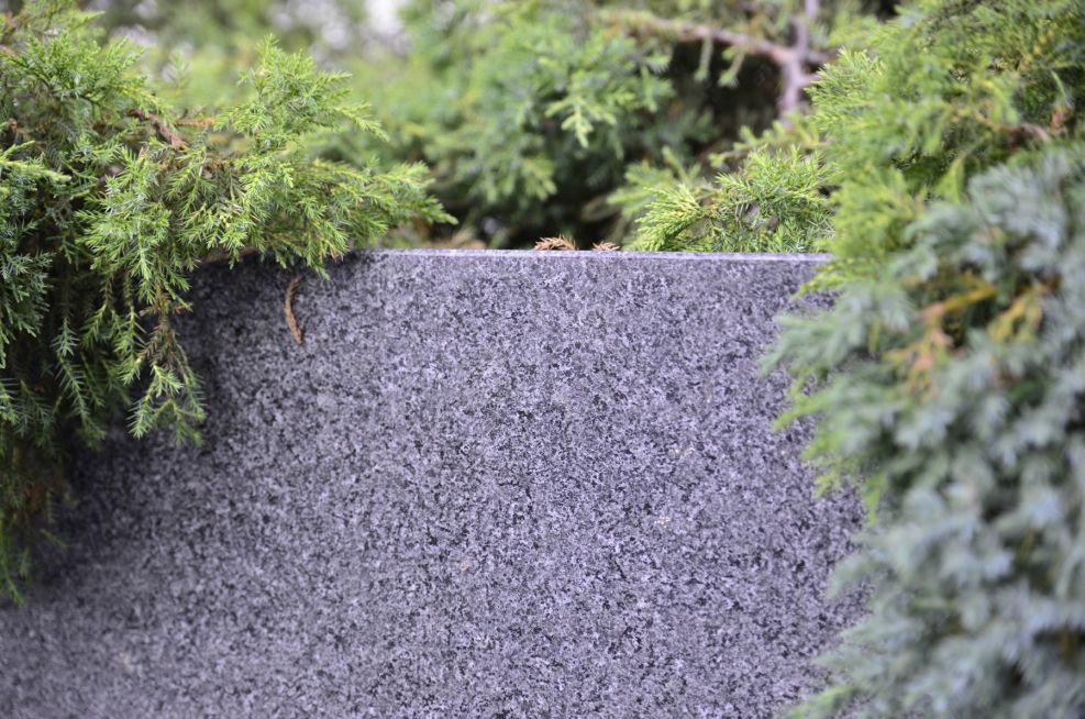 Granite Tree planter Close Up Of Grain