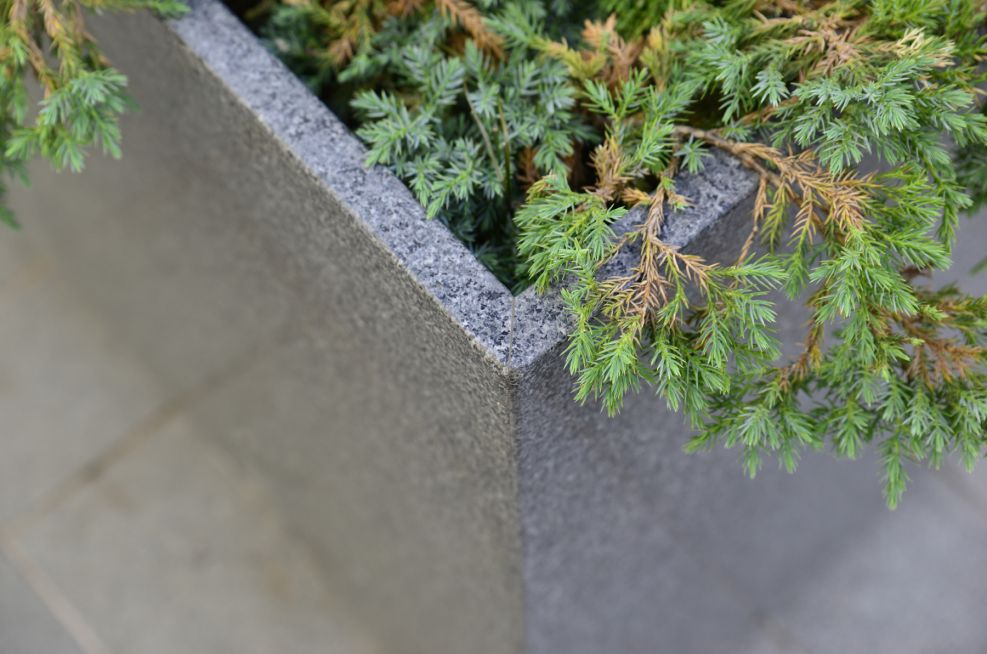 Granite Tree Planters Grain Close Up