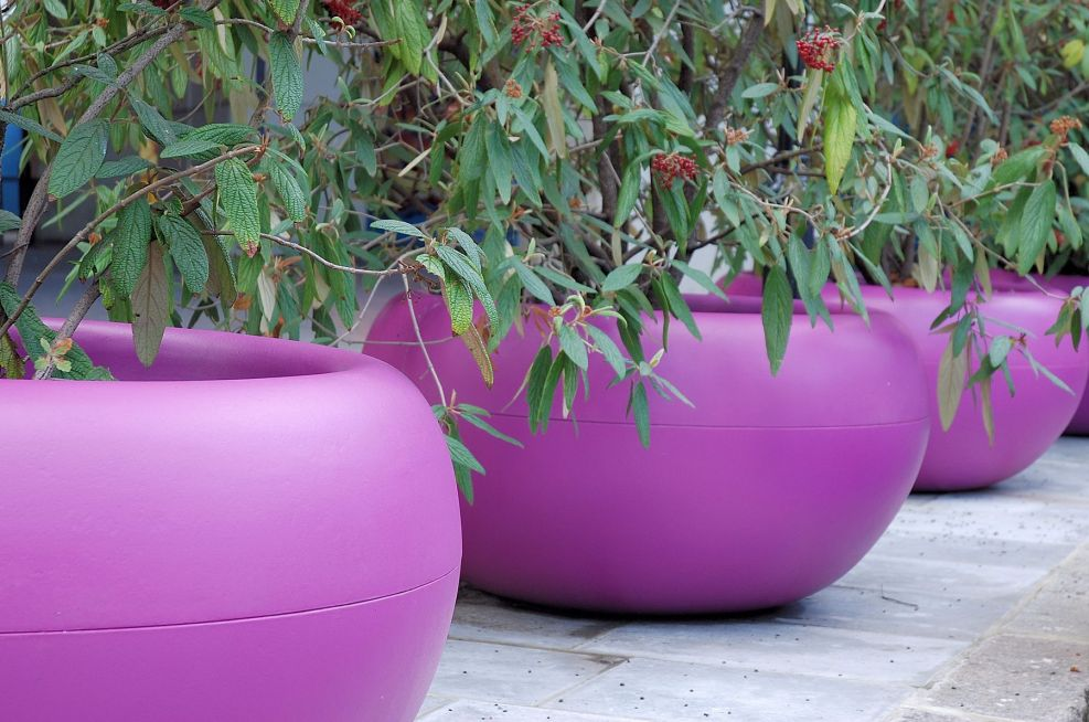 Close Up Of Aladin Planters in RAL 4008