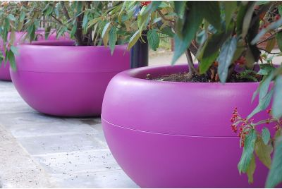 Signal Violet Aladin Composite Planters At Westway Development Trust