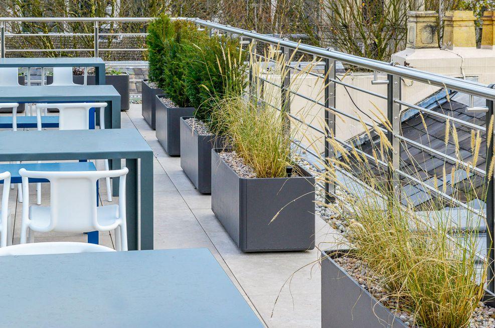 Trough planters for terrace garden