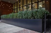 Steel boundary planters for restaurant